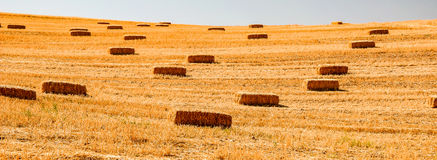 Hay stacks at crop fields in Spain Royalty Free Stock Image