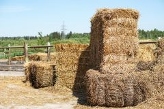 Hay stacks for feeding animals on nature background. Photo royalty free stock images