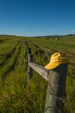 Hay stacks in field Royalty Free Stock Photo