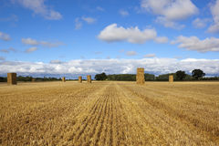 Hay stacks at harvest time Stock Images