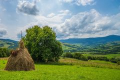Free Hay Stacks In Countryside. Summer. Stock Images - 75671484