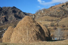 Hay stacks Royalty Free Stock Images