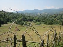 Hay stacks in Romania Royalty Free Stock Photo