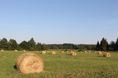 Hay stacks. Stock Photos