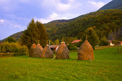 Hay in stacks - village in Serbia Stock Photography