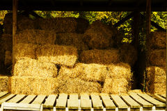 Hay storage. Royalty Free Stock Images