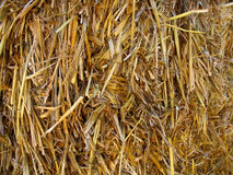 Hay straw background. Close-up of bales of hay, straw with lots of texture Royalty Free Stock Images