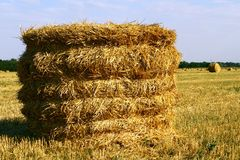 Hay Straw Bale On Agricultural Field, Hay Roll At Autumn Season Imagenes de archivo