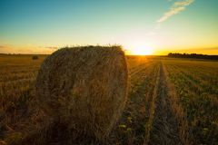 Hay Straw Bale On Field In Countryside At Sunset. Royalty Free Stock Photo