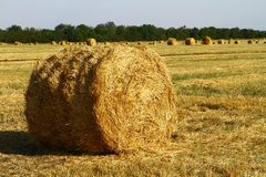 Hay Straw Bale With Shadow On Agricultural Field At Sunset Or Sunrise. Hay Straw Bale With Shadow On Agricultural Field On Blue Sky At Sunset Or Sunrise Stock Photos