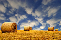 Hay or Straw Bales. Hay or Straw Bales with a vibrant blue sky and clouds Stock Photography