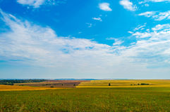 Hay and straw bales in the end of summer Royalty Free Stock Images