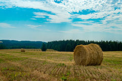 Hay and straw bales in the end of summer Stock Image