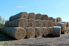 Hay and straw Royalty Free Stock Photo