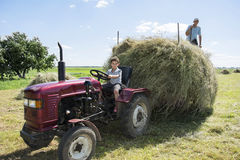 Hay. Summer day on the boy sitting on a tractor and another load Royalty Free Stock Images