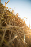 Hay in the sunset Royalty Free Stock Photography