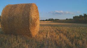 A hay in sunset. A bale of hay in Brossac on a sunset Royalty Free Stock Images