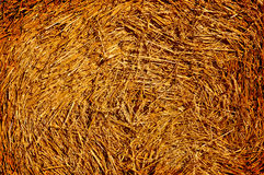 Hay texture background Royalty Free Stock Photography