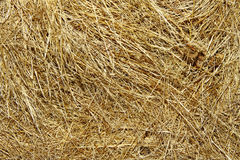 Hay texture stock photos