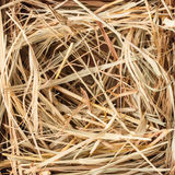 Hay texture. Hay bale for farm background, close up Stock Photo