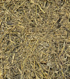Hay texture to background Stock Photography