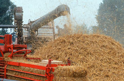 Hay thresher spitting out hay Royalty Free Stock Image