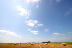 Hay time. Summer landscape field of hay bales Royalty Free Stock Photography