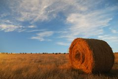 Hay to the Horizon Royalty Free Stock Photo