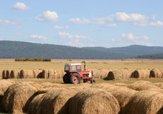 Hay and Tractor in Field. Red tractor in a field full of hay bales; clean, crisp, sharp image; not cropped from original Royalty Free Stock Photos