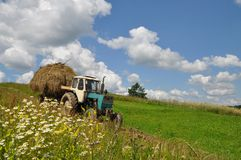 Hay transportation. Stock Images