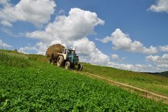 Hay transportation. Stock Photography