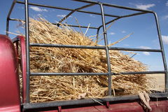 Hay in a truck Stock Photography