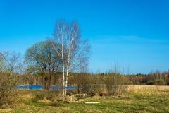 Hay un lugar para una hoguera en la orilla de un pequeño bosque l Fotos de archivo libres de regalías