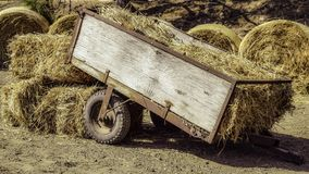 Hay, Vehicle, Soil, Straw Stock Images