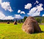 Hay in a village Stock Image
