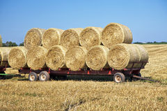 Free Hay Wagon Royalty Free Stock Photo - 24612125
