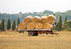 Free Hay Wagon. Stock Photography - 51177932
