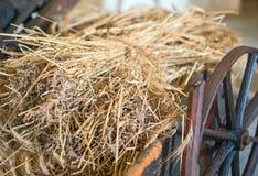 Hay on the wagon. Stock Photos
