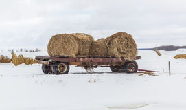 Hay wagon. Farm wagon with round bales Royalty Free Stock Images