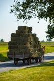 Hay Wagon trainato da cavalli Fotografia Stock
