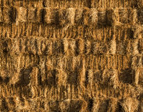 Hay Wall Stack Royalty Free Stock Images