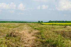 Hay in wide peaceful field in countryside Stock Image