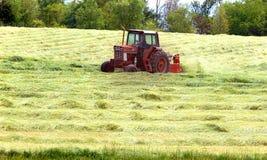 Hay Worker Fotografia Stock