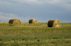 Hay on Wyoming Landscape Royalty Free Stock Images