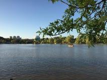 HaYarkon парка в Израиле Тель-Авив Стоковая Фотография