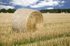 Haybale Stock Foto
