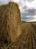 Haybale. And fields Royalty Free Stock Image