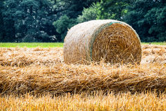 Haybale Royalty Free Stock Photography
