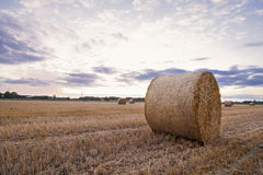 A haybale after the harvest at dusk time Stock Photos