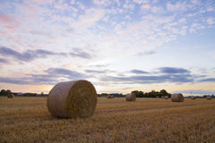 A haybale after the harvest at dusk time Royalty Free Stock Image